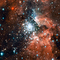 Massive compact star cluster